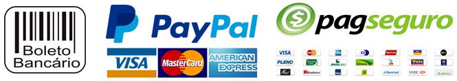 Você poderá escolher entre pagamentos via boleto bancário ou cartão de crédito via Paypal e Pagseguro